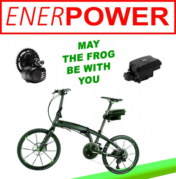 Motor Kit 250W + Battery 36V Seat-Tube 20Ah + Charger 4A